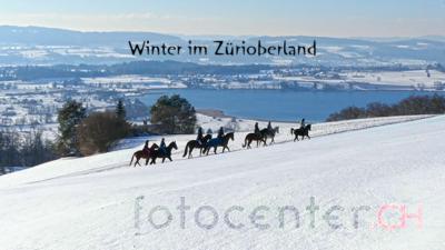 Reiterkolonne über dem Pfäffikersee - Winter im Zürioberland